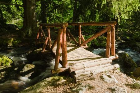 Parco naturale di Vitosha vicino a Sofia, Bulgaria. L'area dei ponti d'oro. Flusso d'acqua e paesaggio del ponte di legno.