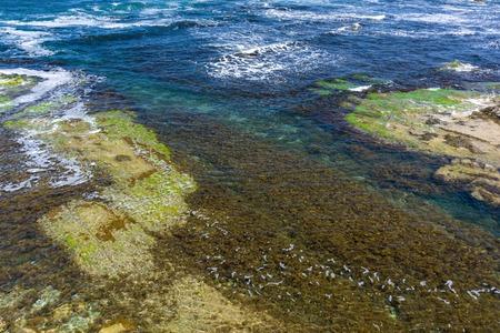 Clear sea water background. Transparent sea surface. Beautiful seascape of the Black Sea coast near Tsarevo, Bulgaria. Arapya bay.