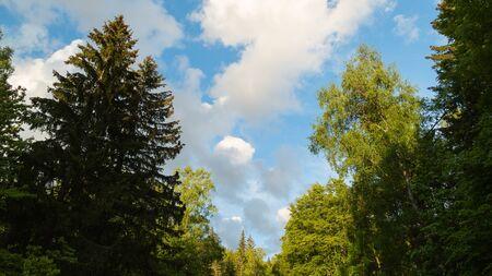 Vitosha Natural Park near Sofia, Bulgaria. The Golden Bridges area. Natural landscape. Stock fotó