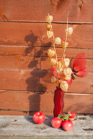 The herbarium in a red vase stands on a wooden bench on the background of a wooden wall. On the back is a large red artificial butterfly. In front of the vase are red apples. Stok Fotoğraf