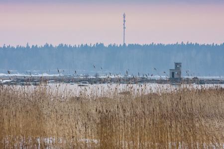 Coast of the Baltic Sea. Foggy spring morning. Leppneeme sadam. Estonia Stok Fotoğraf