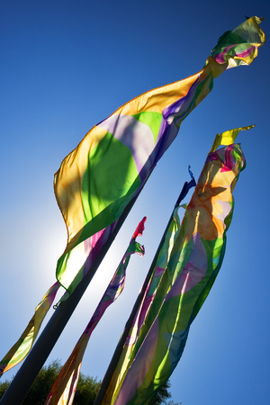 Multicolored flags develop in the wind. The sun shines through flags