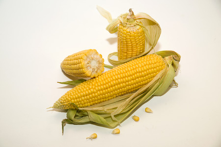 emporium: A few mature ears of corn on over white