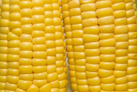 emporium: A few mature ears of corn