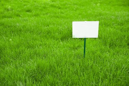 pastureland: Lawn with green grass and white plaque on the lawn