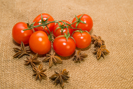 admixture: A lot red tomatos and star anise fruits on old cloth