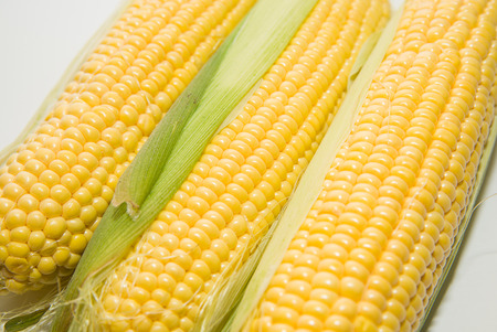 mellow: A ripe fruits of corn on over white