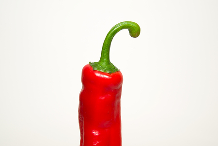 heartiness: One red  pepper on a white background