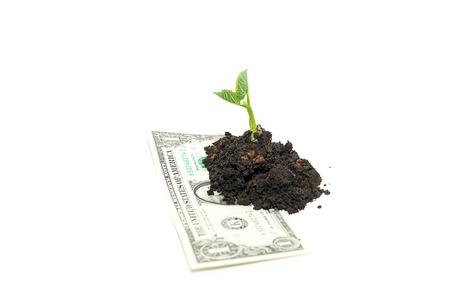 potherb: Green plants sprout up from the pile of soil on the banknote