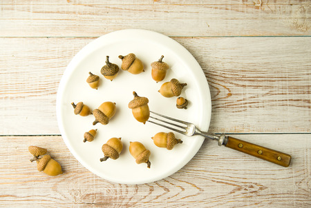 ingestion: Acorns on a plate and fork on the table Stock Photo