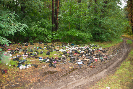defilement: A lot of garbage in the forest.
