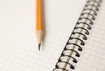 Pencil on the pages of an open notebook