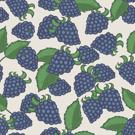 bramble: Doodle blackberries seamless pattern. Pastel background Illustration