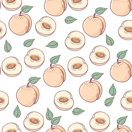 peachy: Hand drawn peach with slice seamless pattern. Fruit background Illustration