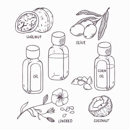aceite de coco: Conjunto de aceite saludable en el estilo de esquema. Coco, nuez, oliva, maíz y semillas de lino ilustración vectorial de aceite Vectores