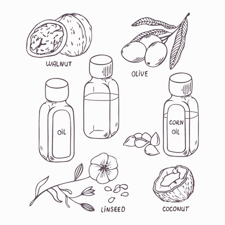Healthy oil set in outline style. Coconut, walnut, olive, corn and linseed oil vector illustration