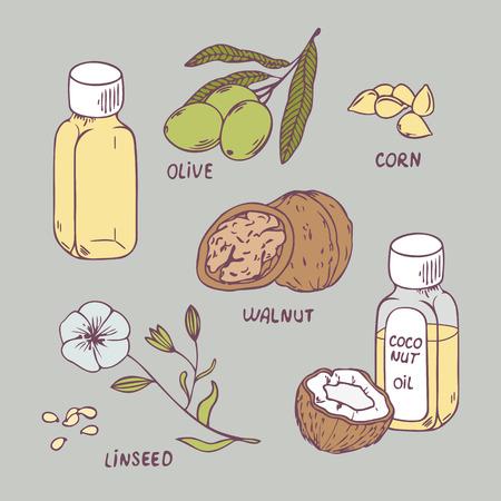 ヘルシー オイル セット。ココナッツ、クルミ、オリーブ、コーン、亜麻仁油のベクトル イラスト