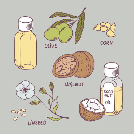 Healthy oil set. Coconut, walnut, olive, corn and linseed oil vector illustration