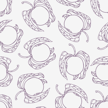 husks: Stylized seamless pattern with outline style physalis. Hand drawn food background