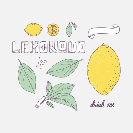 drink me: Set of hand drawn elements for lemonade or soda drink package design. Doodle lemon, leaves, icons, template and handlettering wooden sign. Vector illustration