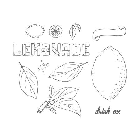 drink me: Set of hand drawn elements for lemonade or soda package design. Doodle lemon, leaves, icons,  template and handlettering wooden sign. Vector illustration Illustration