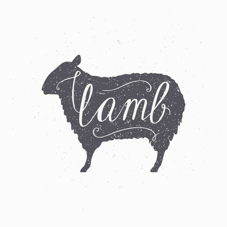 lamb: Hand drawn hipster sheep silhouette. Lamb meat hand lettering. Butcher shop design template for craft lamb meat packaging or food restaurant. Grunge paper style background. Vector illustration