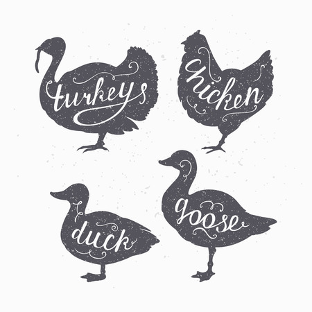 farms: Set of hand drawn hipster style farm birds silhouettes. Chicken, turkey, goose, duck meat hand lettering. Butcher shop design template for craft meat packaging or food restaurant. Craft style. Vector illustration