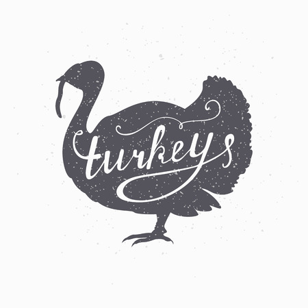 Hand drawn farm bird hipster silhouette. Turkey meat hand lettering. Butcher shop design template for craft beef meat packaging or food restaurant. Grunge paper style background. Vector illustration
