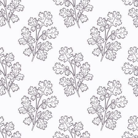 cilantro: Hand drawn cilantro branch outline seamless pattern. Doodle drawing spicy herbs. Kitchen background. Hand drawn seasoning. Vector illustration