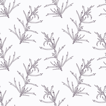 tarragon: Hand drawn tarragon branch outline seamless pattern. Doodle drawing spicy herbs. Kitchen background. Hand drawn seasoning. Vector illustration