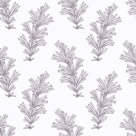 seasoning: Hand drawn rosemary branch outline seamless pattern. Doodle drawing spicy herbs. Kitchen background. Hand drawn seasoning. Vector illustration