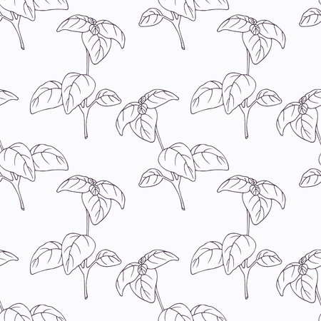 Hand drawn basil branch outline seamless pattern. Doodle drawing spicy herbs. Kitchen background. Hand drawn seasoning. Vector illustration