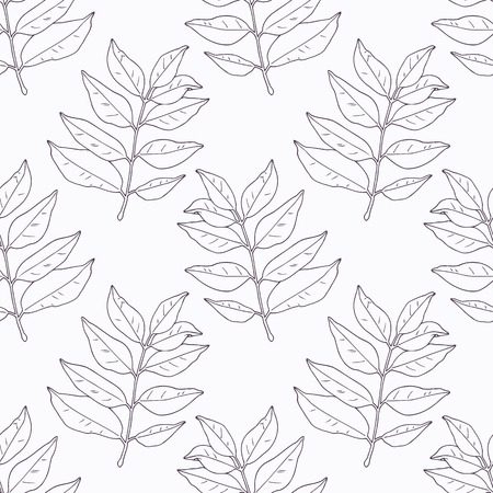 카레: Hand drawn curry leaves and branch outline seamless pattern. Doodle drawing spicy herbs. Kitchen background. Hand drawn seasoning. Vector illustration 일러스트