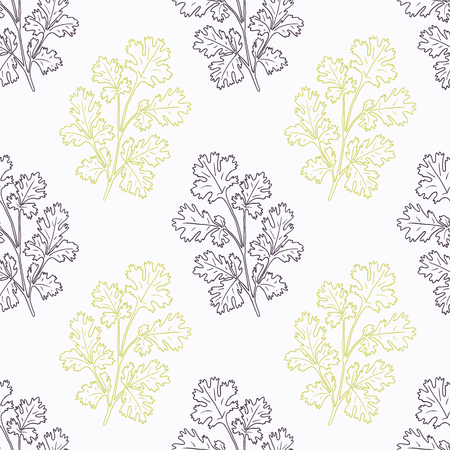 coriander: Hand drawn cilantro branch stylized black and green seamless pattern. Doodle drawing spicy herbs. Kitchen background. Hand drawn seasoning. Vector illustration