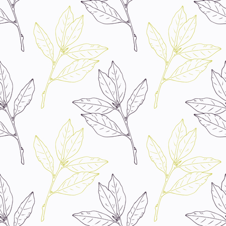 leaf illustration: Hand drawn bay leaf and branch stylized black and green seamless pattern. Doodle drawing spicy herbs. Kitchen background. Hand drawn seasoning. Vector illustration