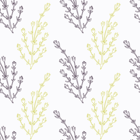 seasoning: Hand drawn thyme branch stylized black and green seamless pattern. Doodle drawing spicy herbs. Kitchen background. Hand drawn seasoning. Vector illustration Illustration