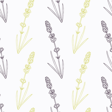 seasoning: Hand drawn lavender branch and flowers stylized black and green seamless pattern. Doodle drawing spicy herbs. Kitchen background. Hand drawn seasoning. Vector illustration Illustration