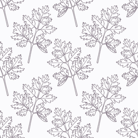 Hand drawn chervil branch outline seamless pattern. Doodle drawing spicy herbs. Kitchen background. Hand drawn seasoning. Vector illustration
