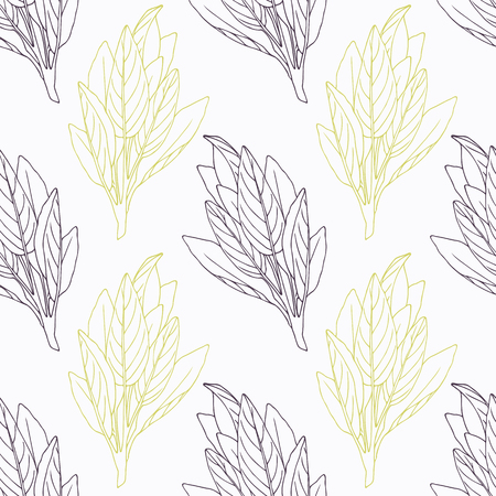 sage: Hand drawn sage branch wirh flowers stylized black and green seamless pattern. Doodle drawing spicy herbs. Kitchen background. Hand drawn seasoning. Vector illustration Illustration