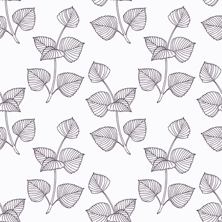 seasoning: Hand drawn perilla branch outline seamless pattern. Doodle drawing spicy herbs. Kitchen background. Hand drawn seasoning. Vector illustration Illustration