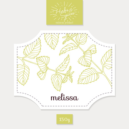 Product sticker with  melissa leaves. Spicy herbs packaging design. Food label template.