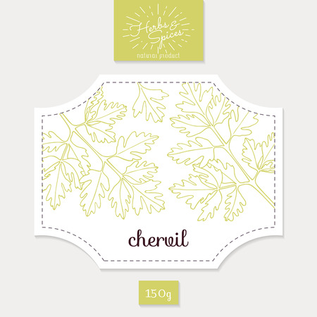 Product sticker with  chervil leaves. Spicy herbs packaging design. Food label template.