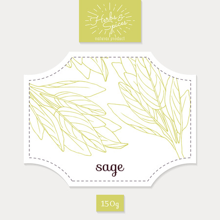 salvia: Product sticker with sage leaves. Spicy herbs packaging design. Food label template.