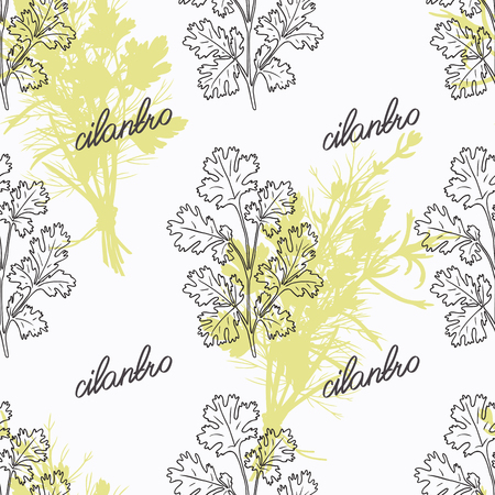 cilantro: Hand drawn cilantro branch and handwritten sign. Spicy herbs seamless pattern with hand lettering seasoning title. Doodle kitchen background.