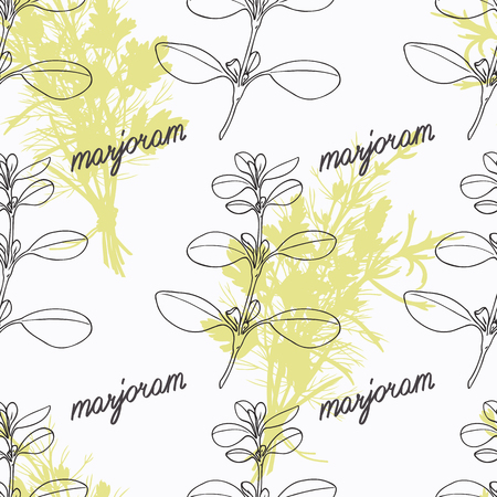 Hand drawn marjoram branch and handwritten sign. Spicy herbs seamless pattern with hand lettering seasoning title. Doodle kitchen background. Illustration