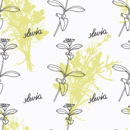 seasoning: Hand drawn stevia branch and handwritten sign. Spicy herbs seamless pattern with hand lettering seasoning title. Doodle kitchen background. Illustration