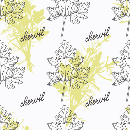 Hand drawn chervil branch and handwritten sign. Spicy herbs seamless pattern with hand lettering seasoning title. Doodle kitchen background. Illustration