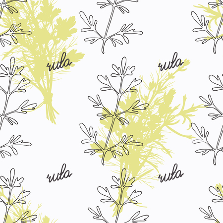ruta: Hand drawn ruta or rue branch and handwritten sign. Spicy herbs seamless pattern with hand lettering seasoning title. Doodle kitchen background.