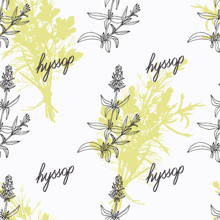 seasoning: Hand drawn hyssop branch, flowers and handwritten sign. Spicy herbs seamless pattern with hand lettering seasoning title. Doodle kitchen background.