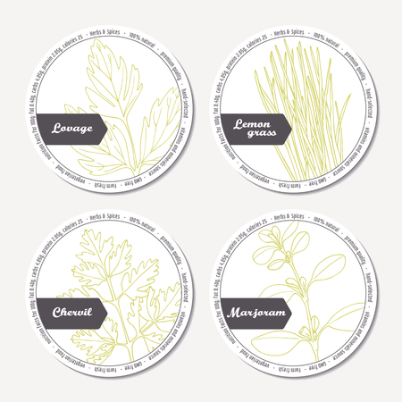 Set of stickers for package design with lovage, lemongrass, chervil, marjoram. Hand drawn spicy herbs. Labels template with place for text. Vector illustration Illustration